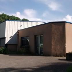 Vente Local d'activités Fleurieu-sur-Saône 1200 m²