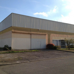 Vente Local d'activités Ramonville-Saint-Agne 590 m²