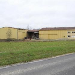 Vente Local d'activités Vaux-sur-Blaise 968 m²