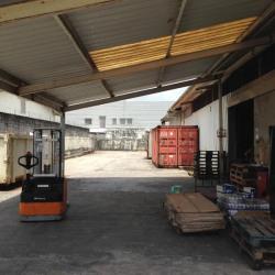 Vente Entrepôt Cayenne 1000 m²