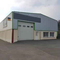 Location Local d'activités / Entrepôt La Chapelle-Saint-Mesmin