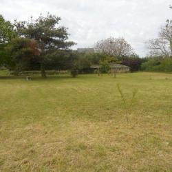 Vente Terrain Chinon 1279 m²
