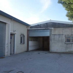 Location Local d'activités La Farlède 242 m²