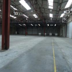 Location Local d'activités Mâcon 6790 m²