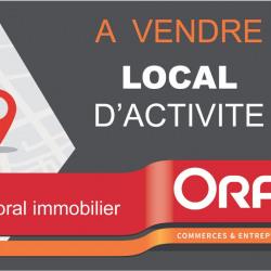 Vente Local d'activités Auray 367 m²