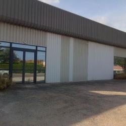 Vente Local d'activités Marsannay-la-Côte 700 m²
