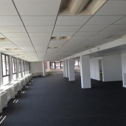 Location Bureau Nogent-sur-Marne 963 m²