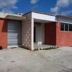 Location Local d'activités La Garde 115 m²