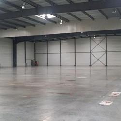 Location Entrepôt Blanquefort 5565 m²