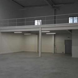 Location Local d'activités Palaiseau 879 m²