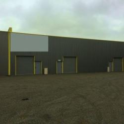 Location Local d'activités Saint-André-de-Cubzac 300 m²