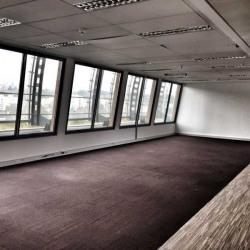 Location Bureau Lyon 6ème 788 m²