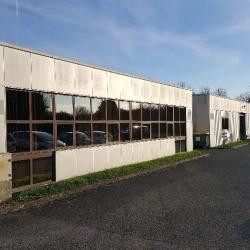 Vente Local d'activités Le Plessis-Pâté (91220)
