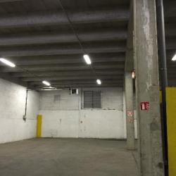 Location Local d'activités Le Blanc-Mesnil 800 m²