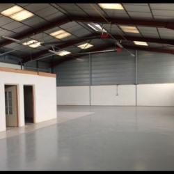 Location Local d'activités Mions 570 m²