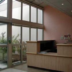 Location Local d'activités Villebon-sur-Yvette 4500 m²
