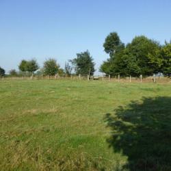Vente Terrain Boissy-Lamberville 2500 m²