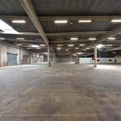 Location Entrepôt Bruges 3818 m²