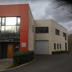 Vente Local d'activités Bussy-Saint-Georges (77600)