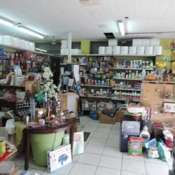 Vente Local commercial Choisy-le-Roi 179 m²