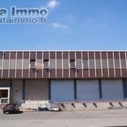 Location Entrepôt Wissous (91320)