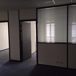 Location Bureau Lyon 2ème 326 m²