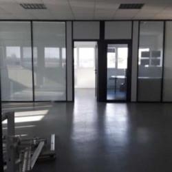 Vente Local d'activités Chelles 1148 m²