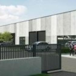 Location Local d'activités Sainghin-en-Mélantois 470 m²