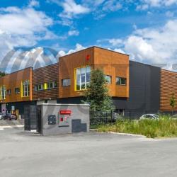 Vente Local d'activités Villebon-sur-Yvette 1305 m²