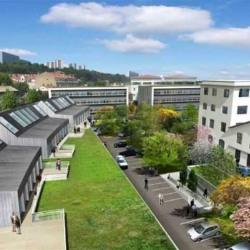 Vente Bureau Lyon 9ème 536 m²