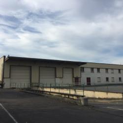 Location Local d'activités Saulx-les-Chartreux 1619 m²