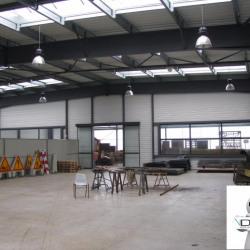 Vente Local d'activités Saint-Pierre-d'Irube 1100 m²