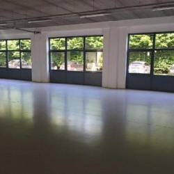 Location Local d'activités Roissy-en-France 641 m²
