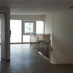 Vente Local d'activités Saulx-les-Chartreux 260 m²