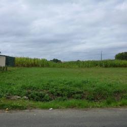 Vente Terrain Saint-Philbert-de-Grand-Lieu 502 m²