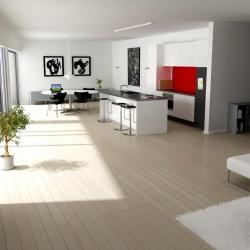Maison  5 pièces + Terrain  528 m² Saint-Marcellin-en-Forez
