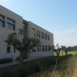 Location Bureau Mauguio 250 m²