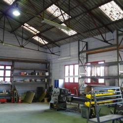 Vente Local d'activités Étagnac 900 m²