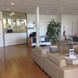 Location Local d'activités Chaponnay 523 m²