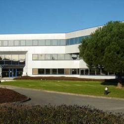 Location Bureau Villebon-sur-Yvette 6956 m²