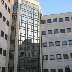 Location Bureau Le Kremlin-Bicêtre 1447 m²