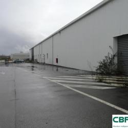 Location Local d'activités Limoges 1769 m²