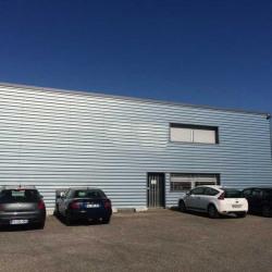 Location Entrepôt Décines-Charpieu 670 m²