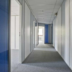 Location Bureau Chatou 51,19 m²