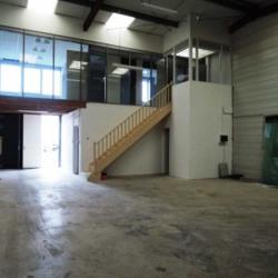 Location Local d'activités Thorigny-sur-Marne 197 m²