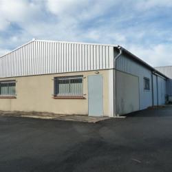 Vente Local d'activités Bouloc 430 m²