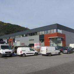 Location Local d'activités Pégomas 557 m²