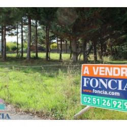Vente Terrain Saint-Gilles-Croix-de-Vie 0 m²