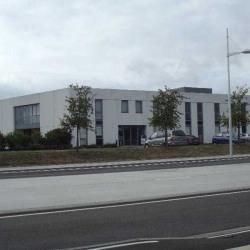 Location Bureau Schiltigheim 17 m²