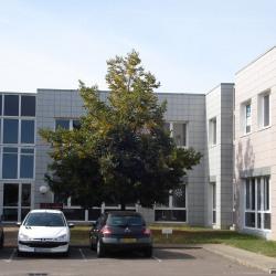 Location Bureau Chenôve 161 m²